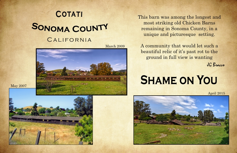 Cotati Barn Passive Demolition